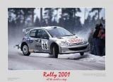Rally 2001